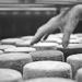 Thumbnail image for Vista Alegre farm and farmhouse dairy