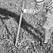 Thumbnail image for Agriturismo Bingia Bonaria