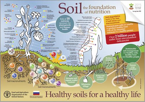 Seminar on humus or soil organic matter for Soil organic matter pdf