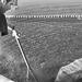 Thumbnail image for Fradis Minoris – l'itturismo nella laguna di Nora